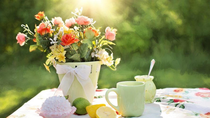 Beautiful morning and flowers