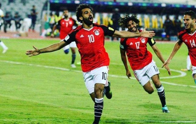كأس العالم على التلفزيون المصرى '' 22 مباراة على البث الارضى''